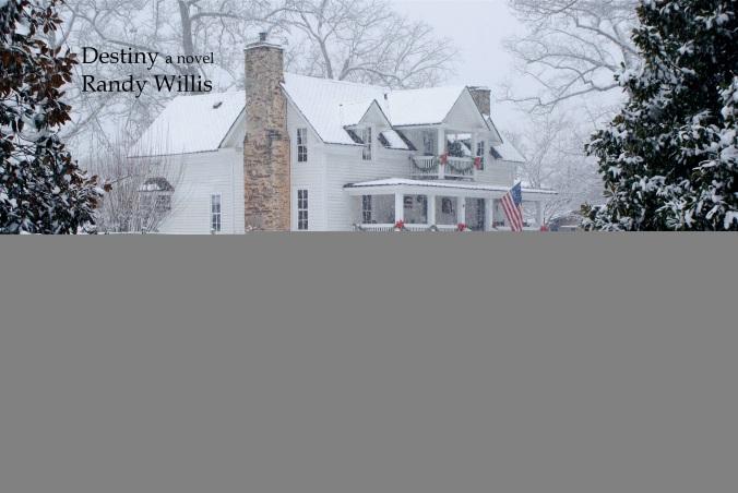 Destiny a novel by Randy Willis
