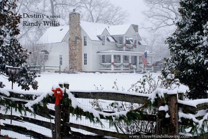 Randy Willis Destiny a novel