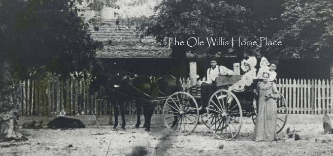 The Ole Willis Place